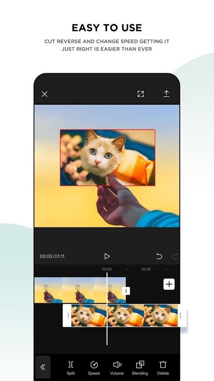 CapCut app